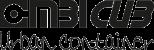 logo-CombiCub-container
